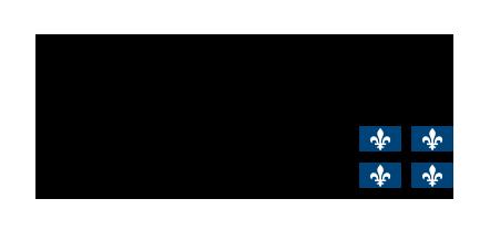Logo du Centre intégré de santé et de services sociaux de la Gaspésie